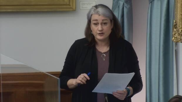 Bell said she has been hearing from accommodation businesses who were told they didn't qualify because they only have one property, some of which have been in business for years.
