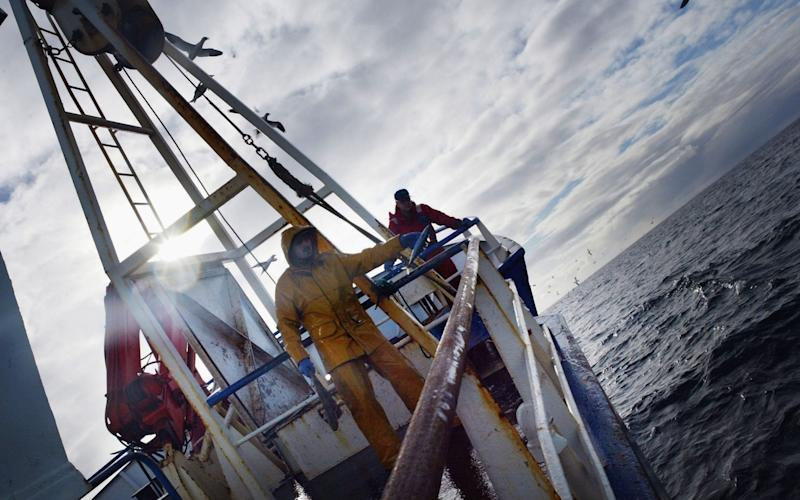 Scottish Trawlermen Work The Waters Of The North Atlantic...NORTH ATLANTIC OCEAN - MARCH 3: Scottish trawlermen on board the trawler Carina haul in their catch, March 3, 2004, some 70 miles in The Atlantic off the north coast of Scotland. Fishing boats operating out of the UK are constantly fighting to stay solvent as increasingly draconian quotas combined with declining stocks make earning their livliehood more difficult - Christopher Furlong/Getty Images