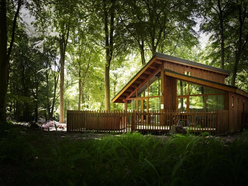 A Golden Oak Cabin at Forest Holidays [Photo: Forest Holidays]