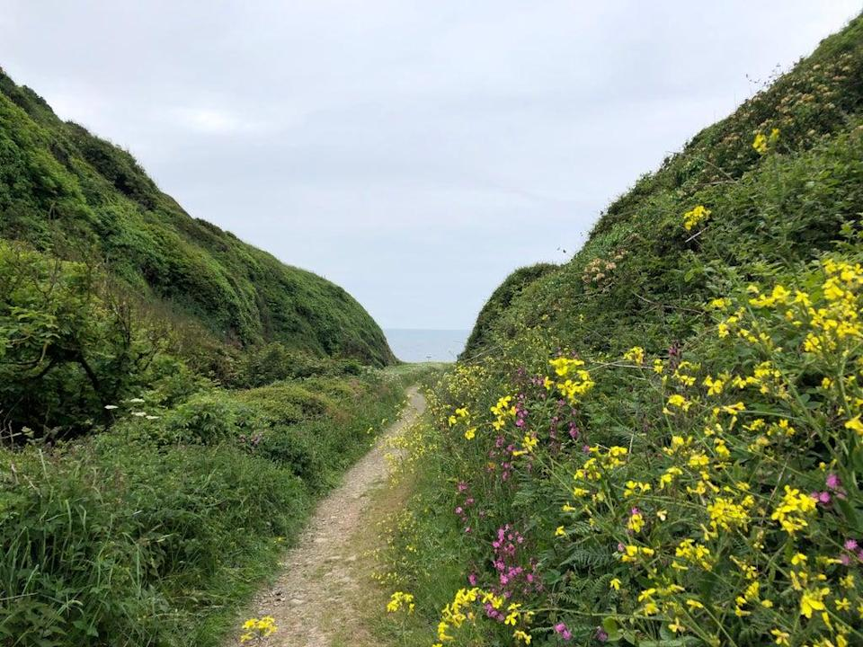 The path to St Ninian's Cave (Rachel Mills)