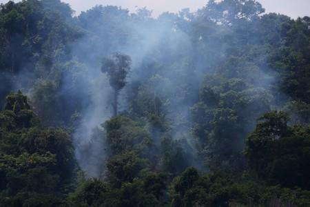 Smoke is seen in a burning area in Jamanxim National Forest, in the Amazon near Novo Progresso