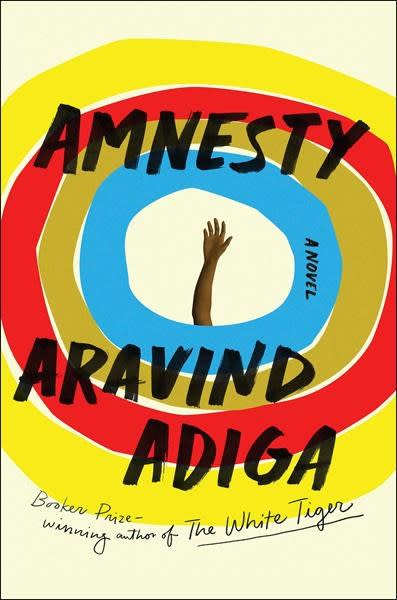 Review: `Amnesty' is a satisfying but frustrating read