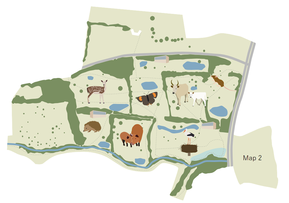 Plans for the green space (Citizen Zoo)