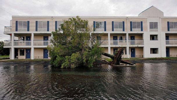 FILE PHOTO: A fallen tree and flood waters sit in a hotel parking lot after Hurricane Dorian swept through, in Wilmington, North Carolina, U.S., September 6, 2019. REUTERS/Jonathan Drake/File Photo (Jonathan Drake/Reuters)