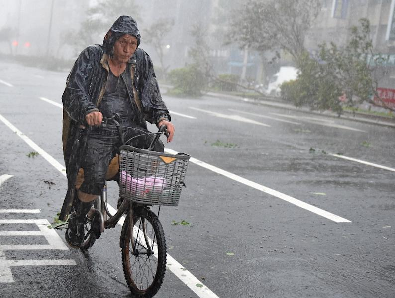 A man rides past damaged trees as typhoon Soudelor hits Taipei on August 8, 2015 (AFP Photo/Sam Yeh)