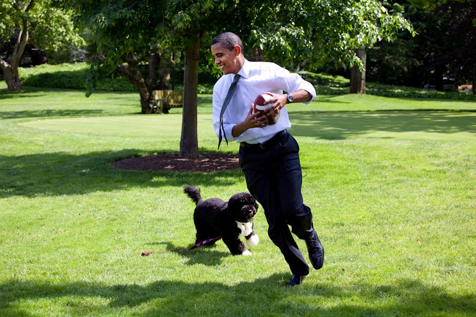 Le président des États-Unis, Barack Obama, joue au football à la Maison-Blanche avec Bo, le chien de la famille, le 12 mai 2009 à Washington. (Photo de Pete Souza/The White House via Getty Images)