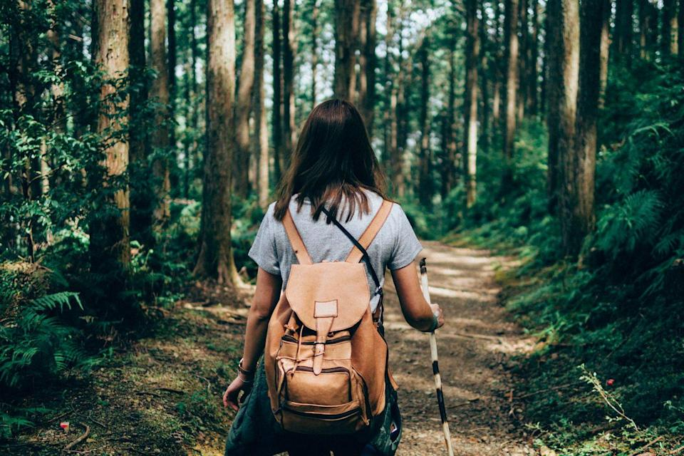 """<p>If you've been hiking the same old trails all fall and winter, consider spring as a good opportunity to find new trails. On websites like <a href=""""https://www.alltrails.com/"""" rel=""""nofollow noopener"""" target=""""_blank"""" data-ylk=""""slk:AllTrails"""" class=""""link rapid-noclick-resp"""">AllTrails</a>, you can research more difficult trails for an adults-only outing as well as easy ones with fun features (maybe waterfalls?) that you can visit with younger family members and/or pets.</p>"""