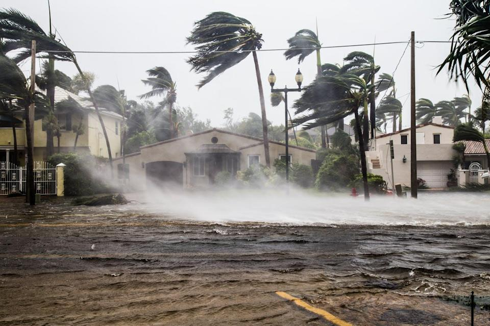 """<span class=""""caption"""">Floods as a result of Hurricane Irma in Fort Lauderdale. </span> <span class=""""attribution""""><a class=""""link rapid-noclick-resp"""" href=""""https://www.shutterstock.com/image-photo/flooded-street-after-catastrophic-hurricane-irma-1256683174"""" rel=""""nofollow noopener"""" target=""""_blank"""" data-ylk=""""slk:Shutterstock.com/FotoKina"""">Shutterstock.com/FotoKina</a></span>"""