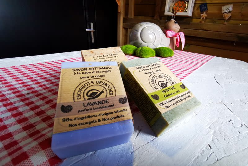 French artisan makes soap with snail slime in northern France