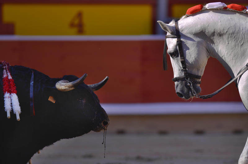 One horse of Spanish mounted bullfighter Pablo Hermoso de Mendoza, looks at the bull during a horseback bullfight at San Fermin Fiestas, in Pamplona, northern Spain on Saturday, July 6, 2013. (AP Photo/Alvaro Barrientos)