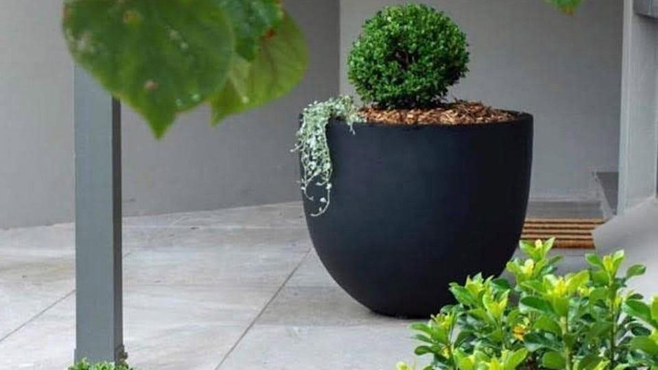 Give your favorite plants the setting they deserve with these well-liked DreamPatio planter pots.