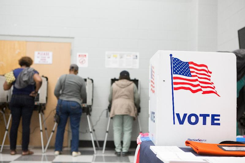 Voters in Atlanta, Georgia cast early ballots on October 18, 2018 (AFP Photo/Jessica McGowan)