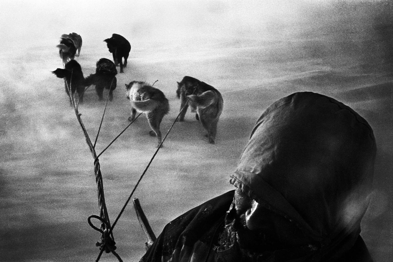 "<p>A hunter and his dogsled caught in a snowstorm on their way home. Tiniteqilaaq, Greenland, 2000. ""'Whoa, whoa!' Hans stops the dogs. I can feel it too; the ice below us is thin. Hans ceaselessly hacks the ice with the handle of his whip to see if it can bear our weight. We're on our way to a land-locked lake to catch trout. Last night, with five dogs in the boat, we sailed from Tiniteqilaaq to the edge of the Amitsivardiva Fjord, Norway. Without solid ice, the trip takes less than an hour. Today it takes five. When the ice gets too thick for the boat we continue by sledge. Hans once fell through the ice with his dog team. The current under the ice was strong and almost dragged him toward the darkness. Trapped in the icy waters, Hans thought he would die. It wasn't until he thought of his daughter that he managed to gather enough strength to fight his way back to the surface. We can now see open water across the ice, so we're forced to head for land and make a detour along the foot of the mountains. We slow down, as does our breathing, and our sweat turns cold. The rain pours down. The mountains arch above us, enclosing us, luring us further and further toward the end of the fjord where new mountains await new tracks."" (© Jacob Aue Sobol/Magnum Photos) </p>"