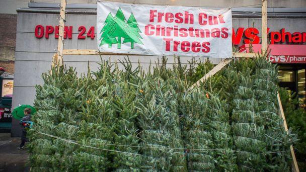 PHOTO: Christmas Trees For Sale In The New York Neighborhood Of Chelsea.  (Richard