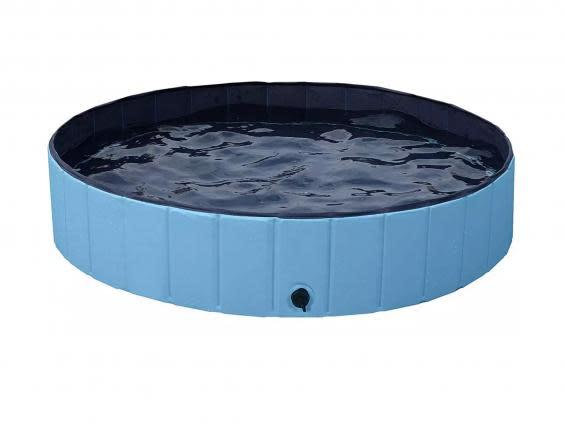 Splash about in a bigger pool if you're dog is medium-sized or larger (Argos)