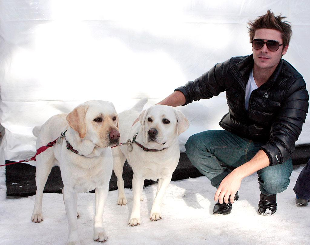"Hottie Zac Efron is just one of the celebs who had a cool time in Aspen, Colorado, over the weekend. May we suggest that Zac's girlfriend Vanessa Hudgens get him a puppy for Christmas? Susan Etter/<a href=""http://www.infdaily.com"" target=""new"">INFDaily.com</a> - December 20, 2009"