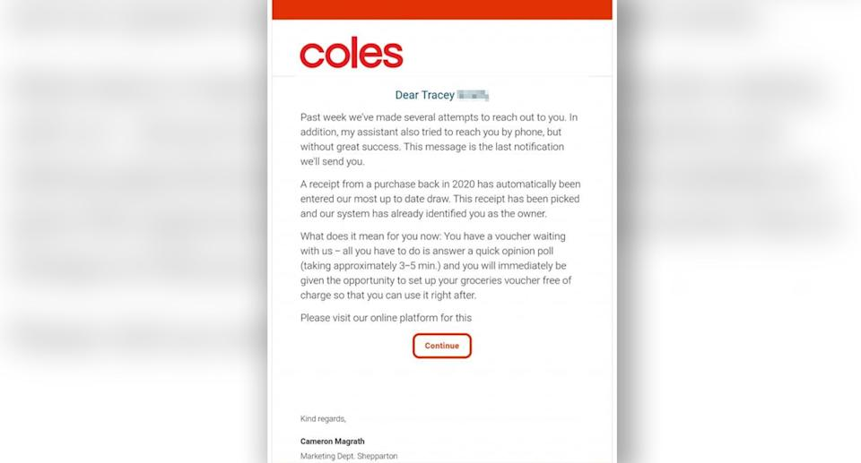 An email a customer received pretending to be from Coles. Source: Facebook