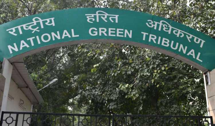 NGT directs Noida to remove encroachments in sector 48