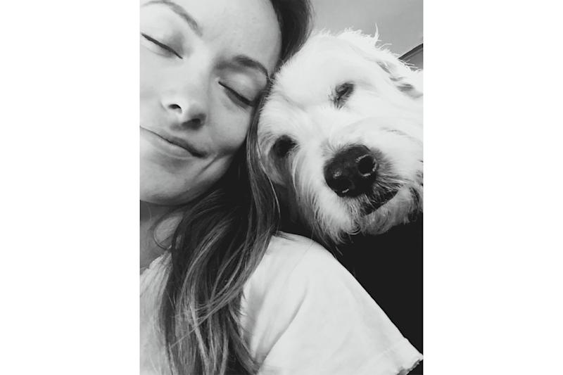 Olivia Wilde's Dog and 'Best Friend' Paco Dies on Her Birthday