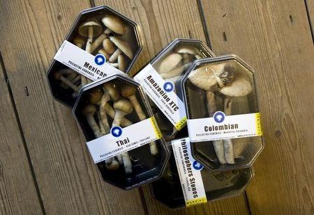 Boxes containing magic mushrooms are displayed at coffee and smart shop in Rotterdam