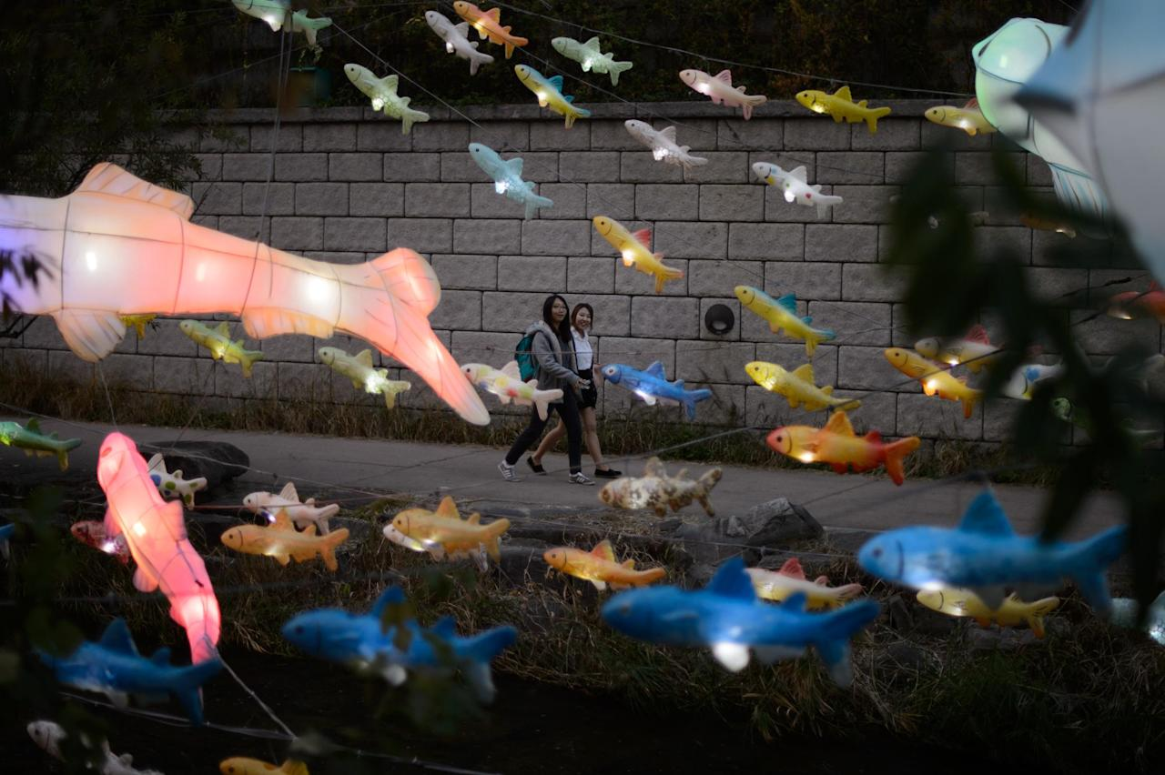 Illuminated lanterns in the shape of fish are displayed above the Cheonggyechun stream in central Seoul during the 6th annual lantern festival on November 6, 2014. The festival, which runs for 17 days, aims to promote cultural and historical awareness through four themed sections.