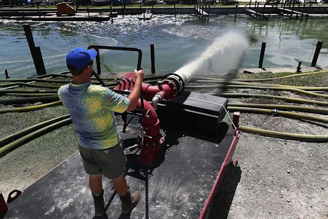 <p>Trace McGuire of Ecosphere Technologies blasts a torrent of water from a water treatment system in an attempt to kill the algae at the Outboards Only marina along the St. Lucie River in Jensen Beach, Fla., July 11, 2016. (Photo: Joe Raedle/Getty Images) </p>