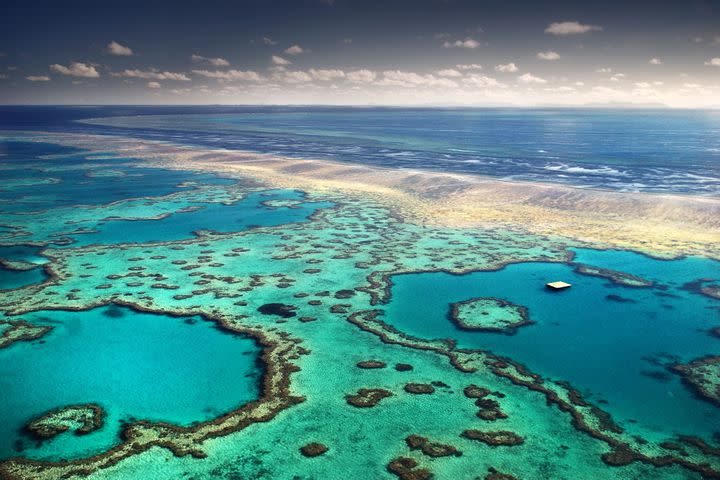 "<img alt=""""/><p>After all, you've probably been meaning to visit.</p> <p>You can take a guided tour down the depths of Australia's Great Barrier Reef in a live broadcast on Twitter's Periscope on Thursday, 12:30 p.m. AEST where people can ask questions to travel personality Mitch Oates.</p> <div><p>SEE ALSO: <a rel=""nofollow"" href=""http://mashable.com/2017/07/06/great-barrier-reef-unesco-in-danger/?utm_cid=a-seealso&utm_campaign=&utm_context=textlink&utm_medium=rss&utm_source="">The very much threatened Great Barrier Reef is not 'in danger,' UNESCO says</a></p></div> <p>Oates has a ""specialist scuba mask"" fitted, which allows him to answer in real-time. It's an interesting initiative, given recent talk around the reef's health <a rel=""nofollow"" href=""http://mashable.com/2017/07/06/great-barrier-reef-unesco-in-danger/?utm_campaign=Mash-BD-Synd-Yahoo-Watercooler-Full&utm_cid=Mash-BD-Synd-Yahoo-Watercooler-Full"">amid the constant threat of climate change</a>.</p> <p>There's also a second broadcast at 2 p.m. AEST, which features the founder of Earth Hour, Andy Ridley, and his new conservation project called Citizens of the Great Barrier Reef on how people can protect the natural site.</p> <p>""The Great Barrier Reef is a living treasure which is ours to protect and share with visitors from around the world,"" said Tourism and Events Queensland CEO, Leanne Coddington, said in a statement via email.</p> <p>""The Great Barrier Reef Periscope Adventure will showcase the underwater wonder and allow people to engage with the Reef in an entirely new way thanks to technology.""</p> <p>You can watch the broadcast on the accounts Twitter AU (<a rel=""nofollow"" href=""http://www.twitter.com/TwitterAU""> @TwitterAU</a> ), (<a rel=""nofollow"" href=""http://www.twitter.com/queensland""> @queensland</a> ), and Citizens of the Great Barrier Reef (<a rel=""nofollow"" href=""http://www.twitter.com/AndyRidley""> @AndyRidley</a> ).</p> <div> <h2><a rel=""nofollow"" href=""http://mashable.com/2017/07/11/prospect-park-pinwheels-connective-project/?utm_campaign=Mash-BD-Synd-Yahoo-Watercooler-Full&utm_cid=Mash-BD-Synd-Yahoo-Watercooler-Full"">WATCH: This garden is filled with 7,000 pinwheels</a></h2> <div> <p><img alt=""Https%3a%2f%2fvdist.aws.mashable.com%2fcms%2f2017%2f7%2ffc0b899c 904d 4c5b%2fthumb%2f00001""></p>   </div> </div>"
