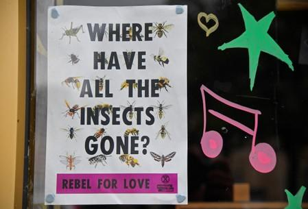 A poster produced by the Extinction Rebellion climate campaign is seen in a shop window in Frome