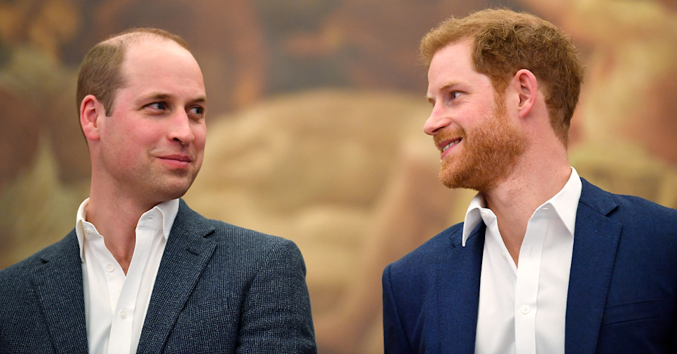 Prince William and Prince Harry.