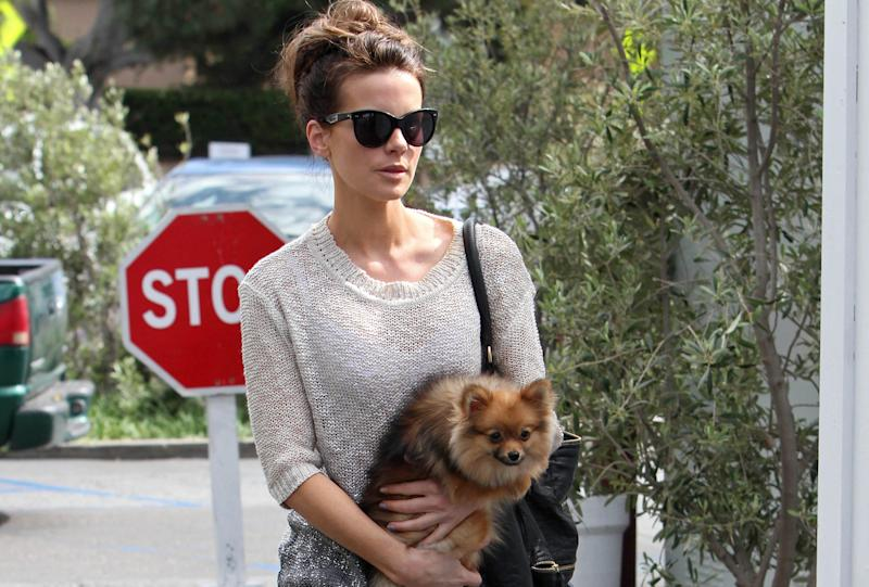 Kate Beckinsale evacuated all her pets amid the California wildfires (Credit: Getty Images)