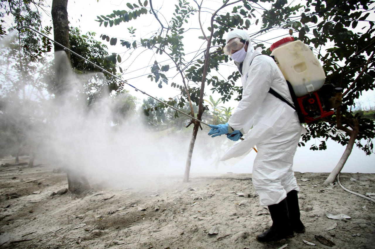 In this photo taken Tuesday, Feb. 14, 2012, a health worker wearing a protective gear sprays disinfectant at a site of a suspected outbreak of the H5N1 bird flu virus among ducks in Nhat Tan commune, Kim Bang district, Ha Nam province, Vietnam. Recent human deaths in Asia and Egypt are a reminder that the deadly H5N1 virus is still alive and dangerous. Vietnam is also grappling with a new strain that has outsmarted vaccines long used to help protect its poultry flocks. The H5N1 virus has killed 345 people worldwide since 2003, when it rampaged across large swaths of Asia decimating poultry stocks before later surfacing in parts of Africa, the Middle East and Europe. (AP Photo/Na Son Nguyen)