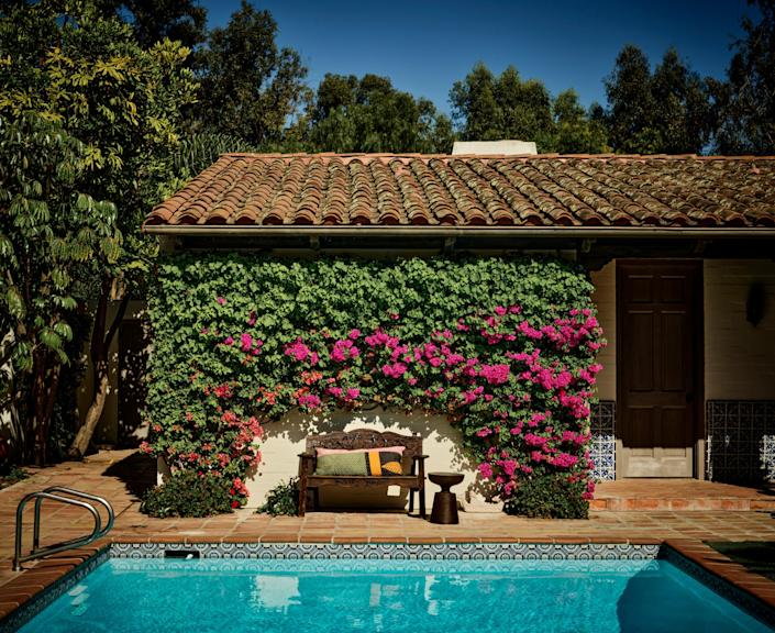 "<div class=""caption""> A swath of bougainvillea covers a wall of the pool house. </div>"