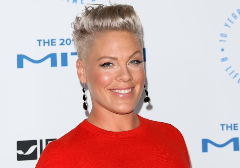 SANTA MONICA, CA - OCTOBER 08: Recording Artist Pink attends the Autism Speaks To Los Angeles Celebrity Chef Gala at Barker Hangar on October 8, 2015 in Santa Monica, California. (Photo by Paul Archuleta/FilmMagic)