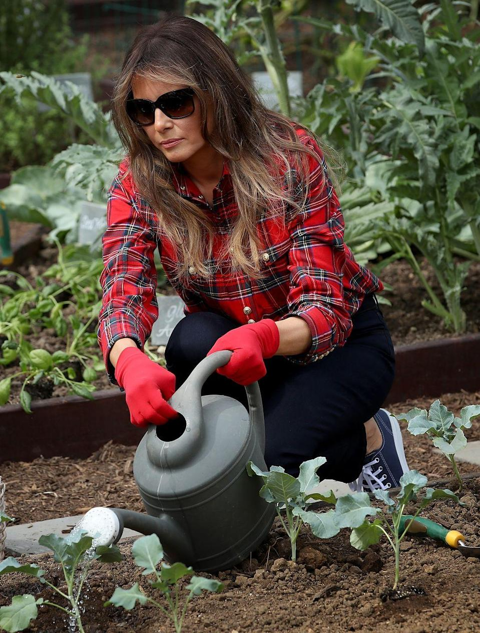 "<p>The first lady wore a $1,380 shirt to her first White House garden event in September. To <a href=""https://www.msn.com/en-ca/lifestyle/style/melania-trump-wore-a-dollar1380-shirt-to-harvest-vegetables-from-the-white-house-garden-%E2%80%94-and-twitter-had-feelings/ar-AAspkjD"" rel=""nofollow noopener"" target=""_blank"" data-ylk=""slk:quote one Twitter user"" class=""link rapid-noclick-resp"">quote one Twitter user</a>, ""That's obscene."" </p>"