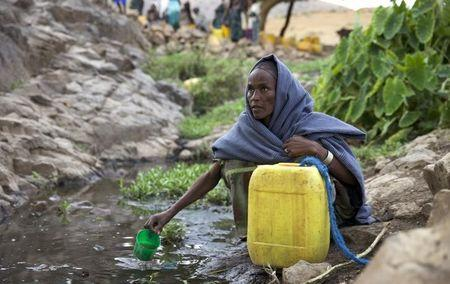 A woman collects water from a stream outside the village of Tsemera in Ethiopia's northern Amhara region