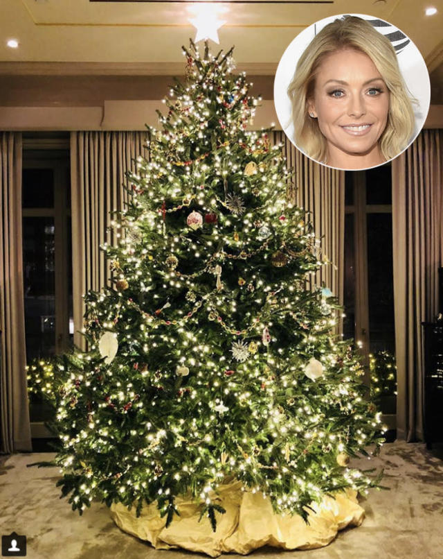 "<p>The morning show host displayed her traditional tree a week after Thanksgiving. Ripa shared, ""She's here…….(yes, it's a she. We can all agree that tree is one elegant lady.)"" (Photo: <a href=""https://www.instagram.com/p/BcGD4zJBi-x/?hl=en&taken-by=kellyripa"" rel=""nofollow noopener"" target=""_blank"" data-ylk=""slk:Kelly Ripa via Instagram"" class=""link rapid-noclick-resp"">Kelly Ripa via Instagram</a>) </p>"