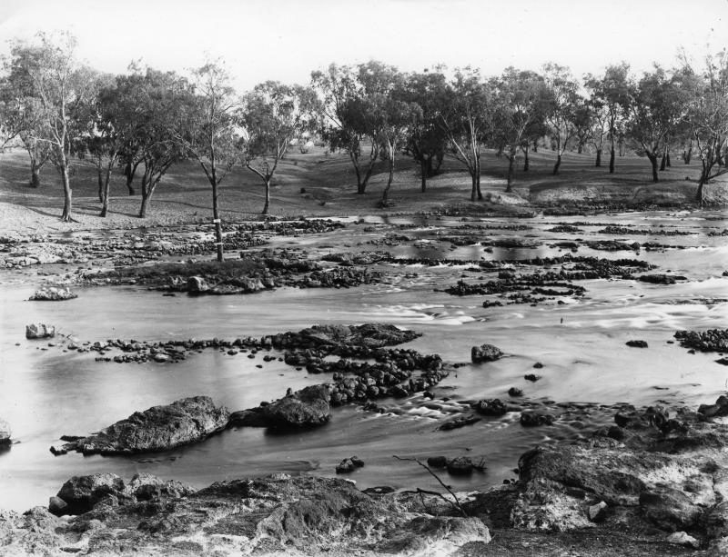 A black and white image of the fish traps.