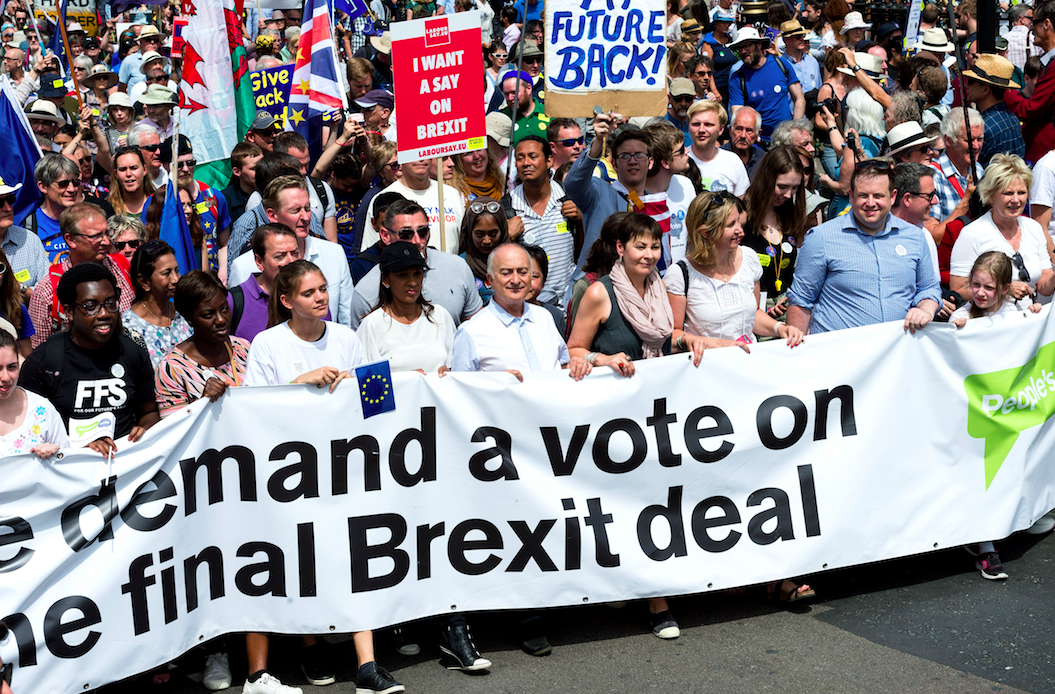 <em>Remainers want a second vote on the terms of the Brexit deal (Rex)</em>