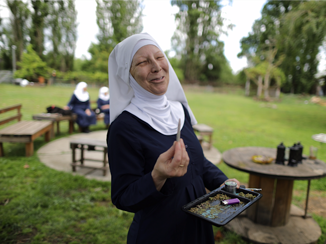 california weed nun sisters of the valley