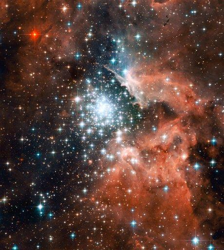 "This image provided by NASA Tuesday Oct. 2, 2007 shows a Hubble Space Telescope image of thousands of sparkling young stars nestled within the giant nebula NGC 3603. This stellar ""jewel box"" is one of the most massive young star clusters in the Milky Way Galaxy. NGC 3603 is a prominent star-forming region in the Carina spiral arm of the Milky Way, about 20,000 light-years away. This latest image from NASA's Hubble Space Telescope shows a young star cluster surrounded by a vast region of dust and gas. The image reveals stages in the life cycle of stars. AP Photo/NASA)"