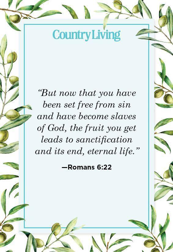 """<p>""""But now that you have been set free from sin and have become slaves of God, the fruit you get leads to sanctification and its end, eternal life.""""</p>"""