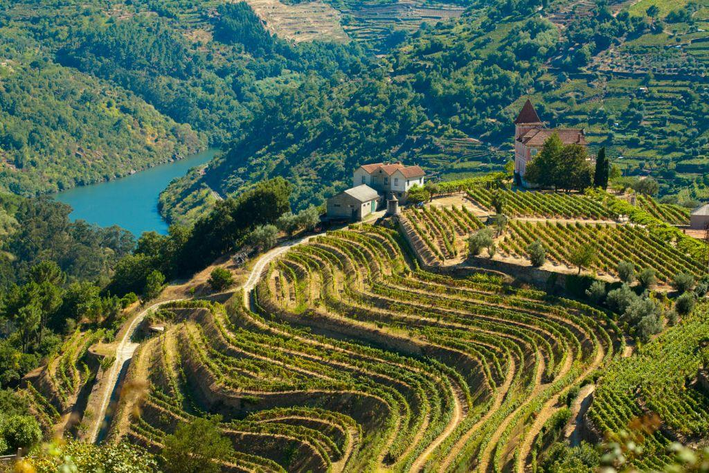 <b>DOURO, PORTUGAL </b><br>Douro is a wine region in Portugal that takes its name from the Douro River. It is one of the earliest known winemaking regions of the world and historical evidence shows that its tradition dates back at least to the 3rd and 4th centuries.