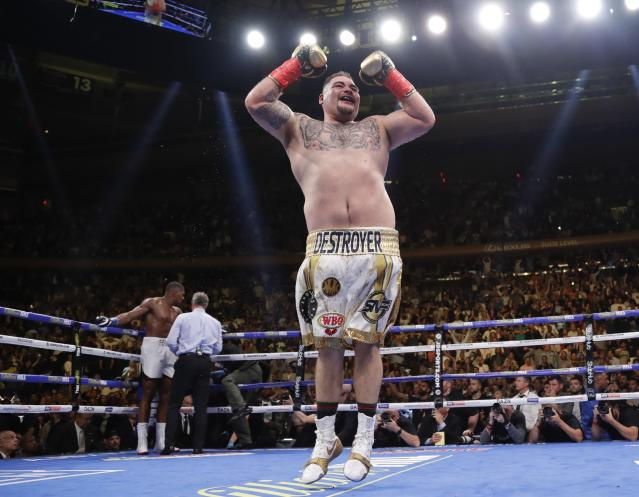 Andy Ruiz celebrates after stopping British boxer Anthony Joshua during the seventh round of a heavyweight title boxing match Saturday, June 1, 2019, in New York. (AP Photo/Frank Franklin II)
