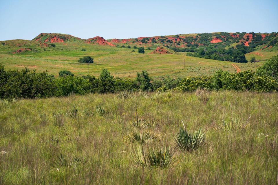 """<p><a href=""""https://www.nps.gov/waba/index.htm"""" rel=""""nofollow noopener"""" target=""""_blank"""" data-ylk=""""slk:Washita Battlefield National Historic Site"""" class=""""link rapid-noclick-resp""""><strong>Washita Battlefield National Historic Site</strong></a></p><p>This is the spot of the tragic battle between George Custer and Cheyenne village Peace Chief Black Kettle. While this awful battle is part of a darker time in American history, it's important to learn about these events and pay respects to the fallen.</p>"""