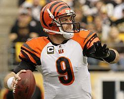 Palmer played mistake-free football for the Bengals