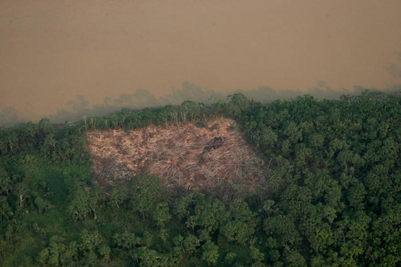 An aerial view shows a deforested plot of the Amazon near Porto Velho