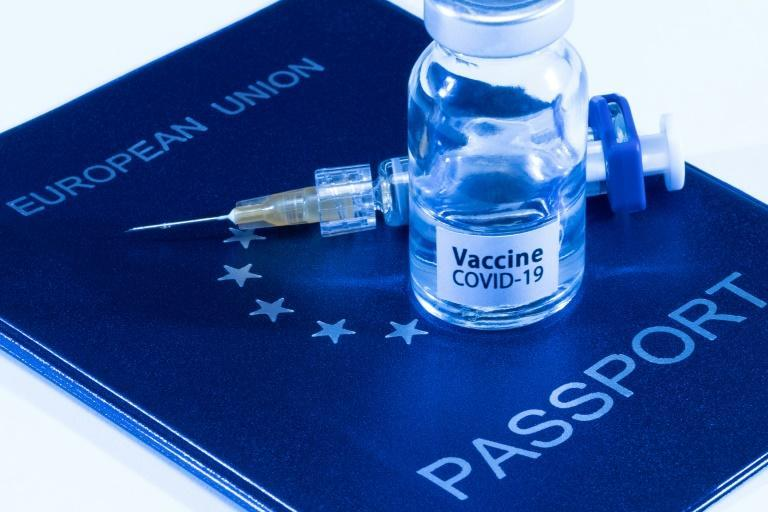 The certificate will show the bearer's vaccination status, or whether they have immunity from a Covid infection they have recovered from, or the result of a Covid test