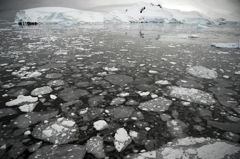 The last time there was so much CO2 in Earth's atmosphere, ice caps virtually disappeared (AFP Photo/EITAN ABRAMOVICH)