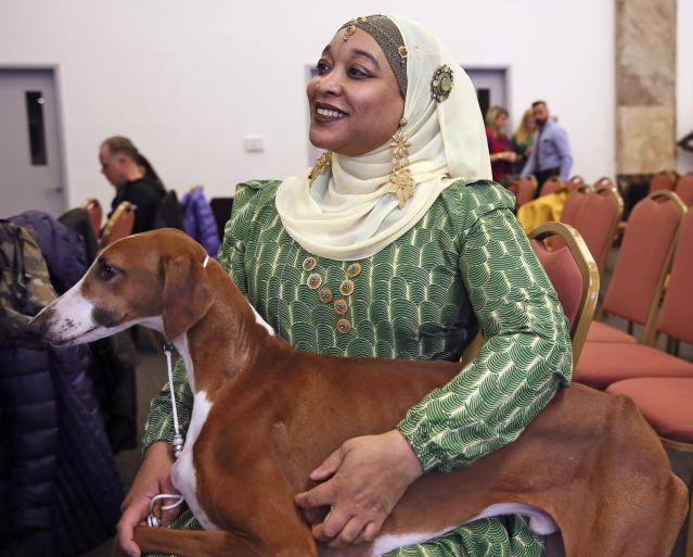 In this Tuesday, Feb. 4, 2020 photo, Aliya Taylor shows an Azawakh at the Westminster Dog Show preview in New York. Competition begins Saturday, Feb. 8, 2020 with the agility event that's open to mutts and everyone else. Breed judging for beagles, whippets and the newly welcomed Azawakh in the purebred portion of the show starts Sunday. (AP Photo/Jennifer Peltz)