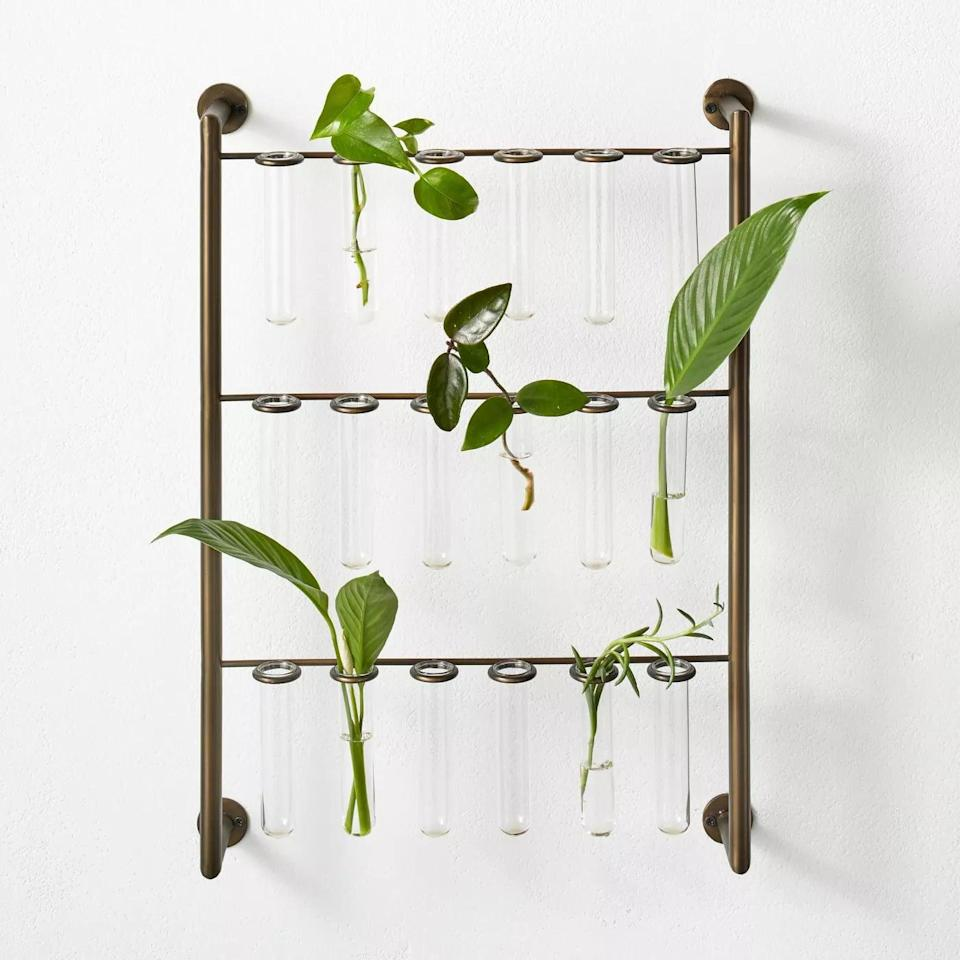 <p>We're very into the apothecary look of this <span>Hilton Carter for Target Metal Hanging Stem Plant Stand</span> ($50). If they're a plant parent, they'll put this to use!</p>
